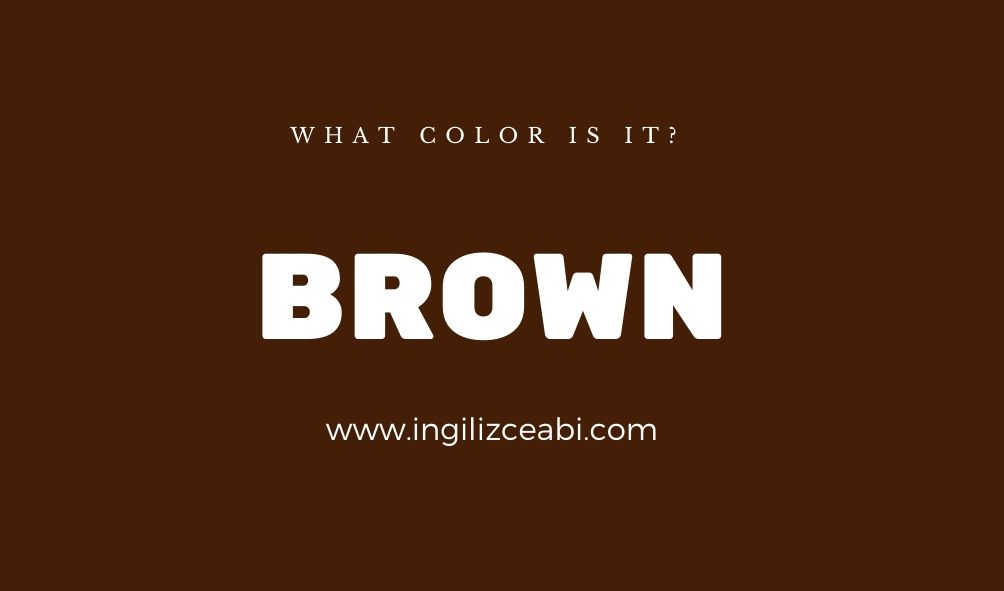 This is brown. - ingilizce renkler