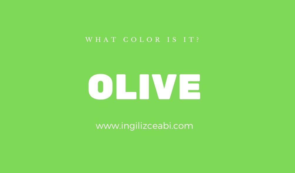 This is olive. - ingilizce renkler