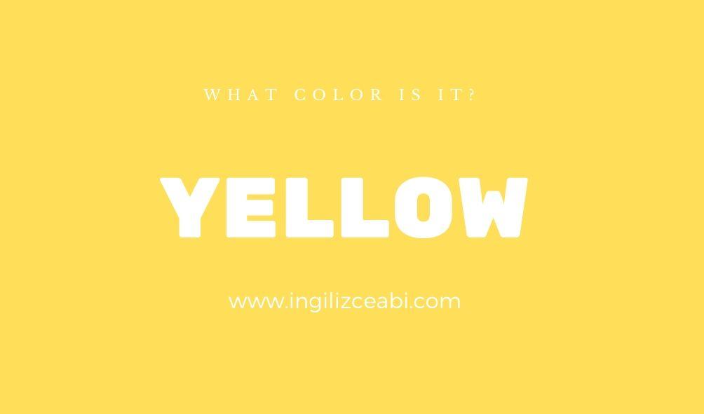 This is yellow. - ingilizceabi