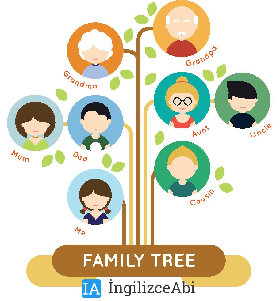 İngilizce Aile Bireyleri Anlamları ve Okunuşları - Family Members